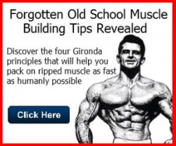 gaining muscle size and density pdf