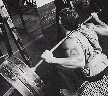 German Body Composition - Arnold Squatting