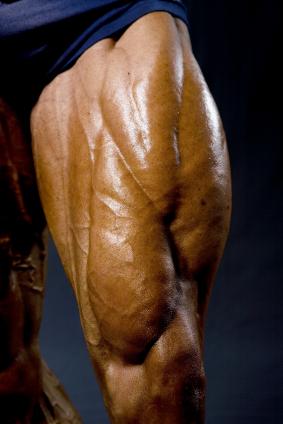 Training the Quads for Maximum Size Gain – Part One ...